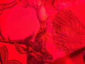 赤のレンズを通して見たilluminature