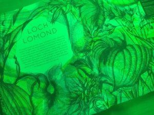 illuminatureの緑のレンズを通して見た景色